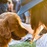 Brilliant Energy Celebrates Houston Area Animal Shelter